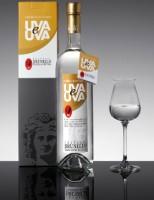Distillatto Uva e Uva Acquavite di Uve Bianche